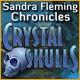 Sandra Fleming Chronicles: The Crystal Skull - PC game free download